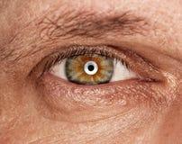 Human eye Royalty Free Stock Image