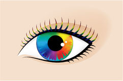 Human eye. With a multi-coloured pupil and eyelashes Stock Photos