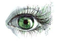 Human eye. Painting of beautiful human eye (series C Stock Photos