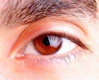 Human eye. Close up photo royalty free stock photography
