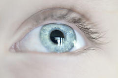 Human Eye. Close-up of Human Eye Royalty Free Stock Images