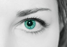 Human eye. This is image of human eye royalty free stock photo