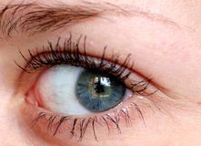 Human eye. Royalty Free Stock Photography
