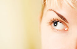 Human eye. Picture of a Human eye Stock Photography