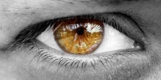 Free Human Eye Stock Image - 45125311