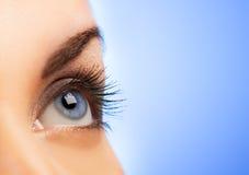 Human eye. On blue background (shallow DoF Stock Image