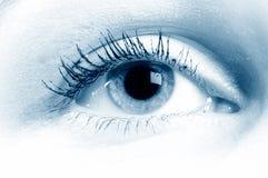 Human Eye. / beautiful, beauty, bloodshot stock photo