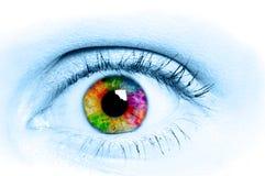 Human Eye. / beauty, bloodshot, brows stock photos