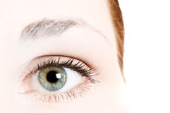 Human eye Royalty Free Stock Photos