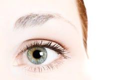 Human eye. Beauty, bloodshot, brows royalty free stock photos