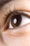 Human eye. Close up of the human eye stock photography