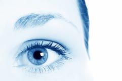 Human eye. / bloodshot, brows, care stock image