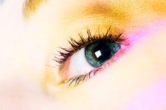 Human eye. Eyelashes, eyelid, eyes, focus stock photo