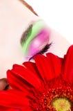 Human eye. Eyelashes, eyelid, eyes, focus royalty free stock photos
