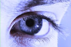 Human eye in blue color Stock Image