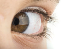Human eye brown color Stock Photo