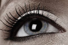 Human eye close up royalty free stock photo