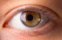 Human eye close-up. Dark green human eye royalty free stock image
