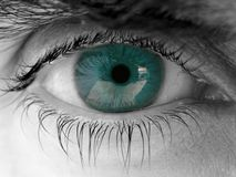 Human eye Royalty Free Stock Image
