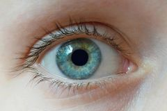 Human eye close up. Human healthy eye close up royalty free stock images