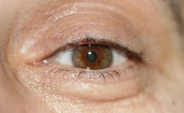 Human eye close-up, healthy eye royalty free stock images