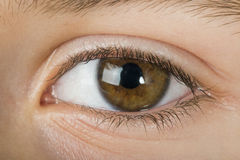 Human eye. Close up studio shot. Child eye royalty free stock image