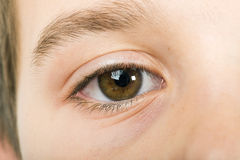 Human eye. Close up studio shot. Child eye royalty free stock images