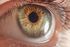 Human eye closeup Stock Photos