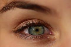 Human eye closeup Royalty Free Stock Images