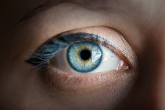 Human eye. Color toned image. Human blue eye with reflection closeup. Color toned image Stock Photo