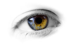 Human eye - hazel Stock Photos