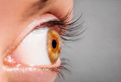 Human Eye. Horizontal photo of a hazel female human eye. The image is useful for laser cataract treatment purposes stock images