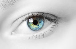 Human Eye Royalty Free Stock Photo