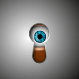 The human eye Royalty Free Stock Photo