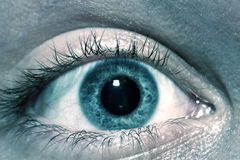 Human Eye Macro Stock Photos