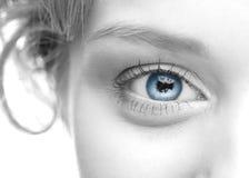 Human eye Royalty Free Stock Photos