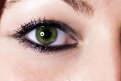 Human eye macro shoot Royalty Free Stock Photos