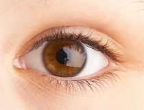 Human eye. macro shooting Royalty Free Stock Photo