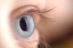 Human eye. macro shooting... Stock Photography