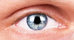The human eye without makeup closeup. Royalty Free Stock Photos