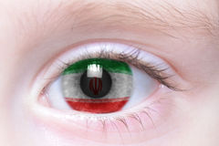 Human eye with national flag of iran. Human`s eye with national flag of iran Stock Images