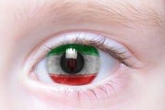 Human eye with national flag of iran. Human`s eye with national flag of iran stock images