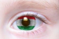 Human eye with national flag of kurdistan. Human`s eye with national flag of kurdistan Royalty Free Stock Photos