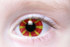 Human eye with national flag of macedonia Royalty Free Stock Photos