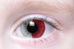 Human eye with national flag of malta. Human`s eye with national flag of malta Stock Photography