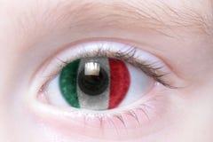 Human eye with national flag of mexico. Human`s eye with national flag of mexico stock photo