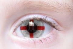 Human eye with national flag of northern ireland Stock Photography