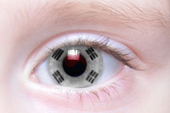 Human eye with national flag of south korea. Human`s eye with national flag of south korea royalty free stock photo