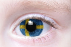 Human eye with national flag of sweden Stock Photography