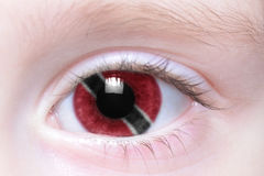 Human eye with national flag of trinidad and tobago Stock Image